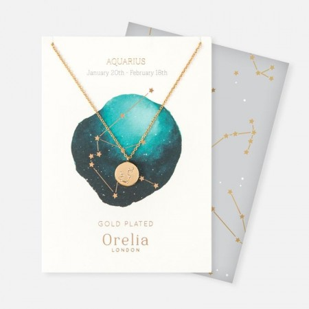 Orelia Aquarius Constellation Necklace
